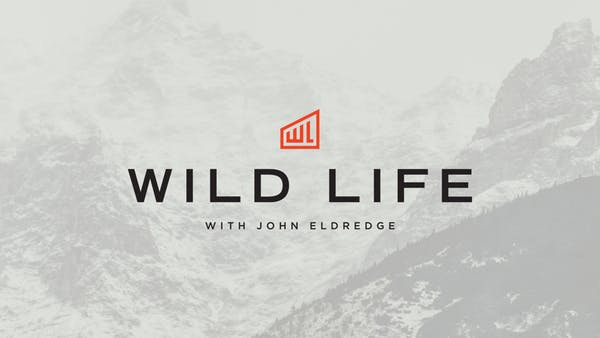 Wild Life with John Eldredge